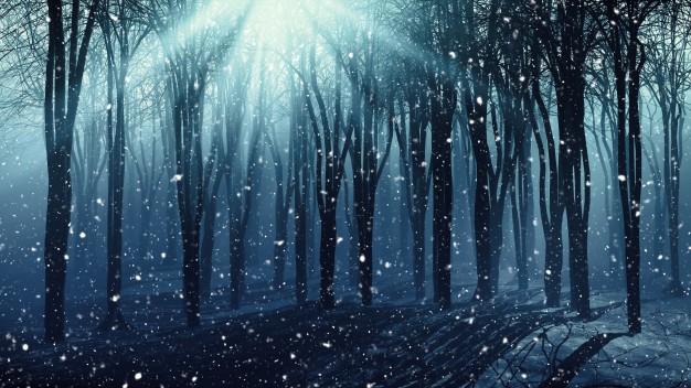 winter-forest_1048-4060elk